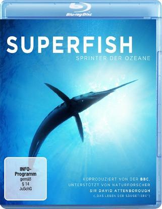 自然:超级鱼类