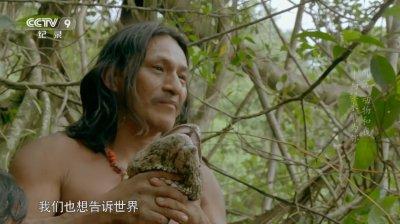 部落动物和我