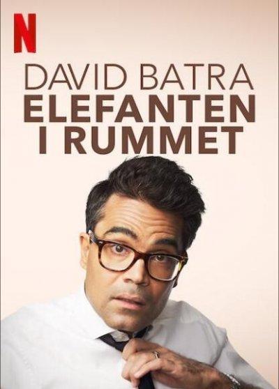 大卫·巴特拉:房间里的大象