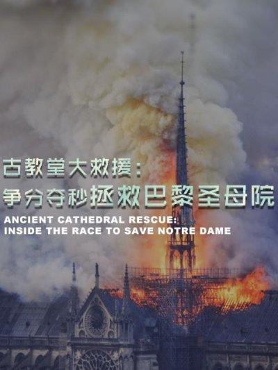 古教堂大救援:争分夺秒拯救巴黎圣母院